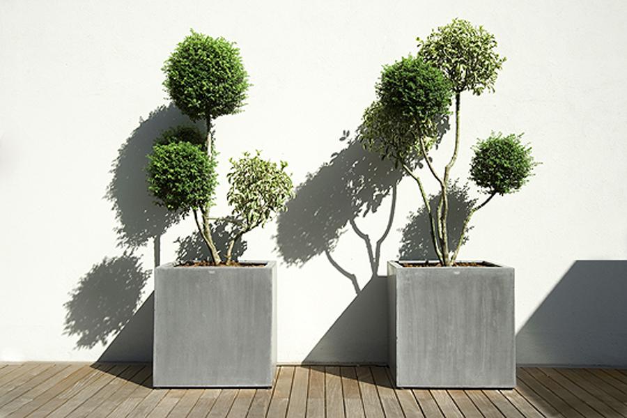 Vasi giardino - Shopping Acquea